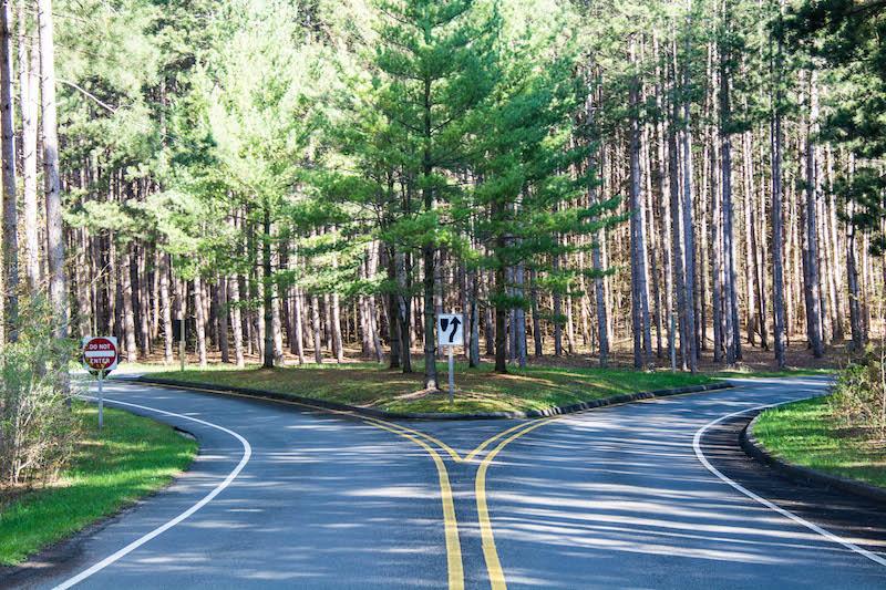 Pierce Stocking Scenic Drive