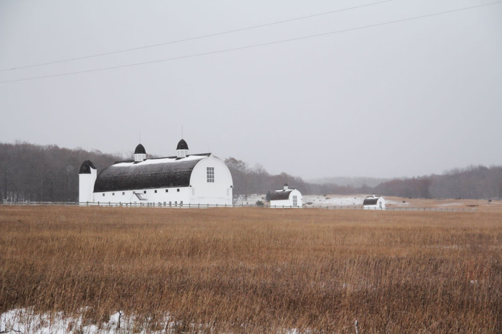 D. H. Day Farm in early winter