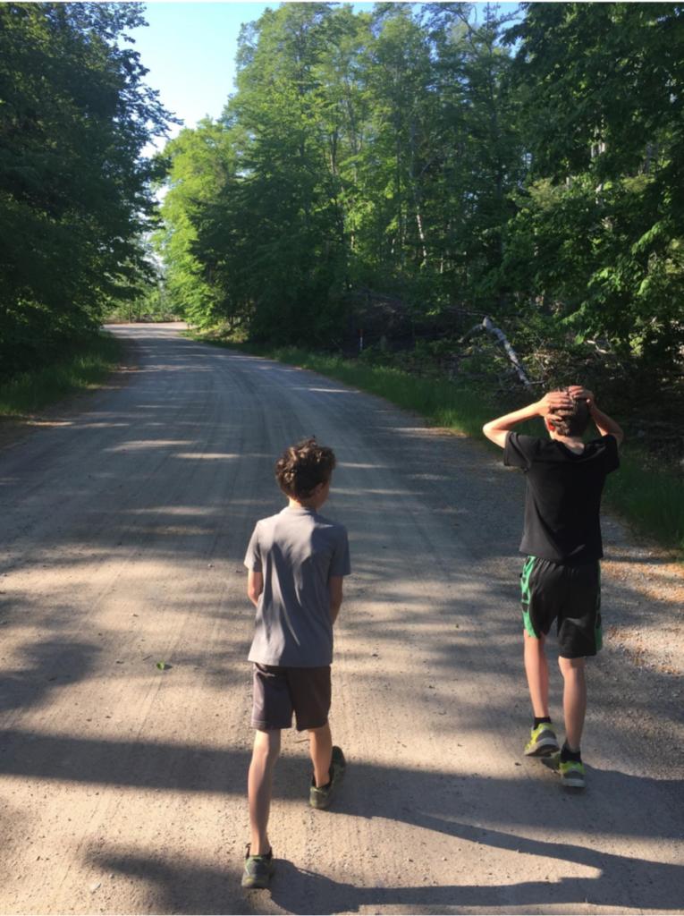 Colebrook and Hawthorn on some Leelanau backroads.